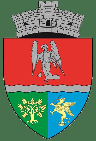 Primăria Nuşfalău